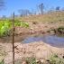 Projeto de reflorestamento e recuperação de áreas degradadas reiniciará atividades